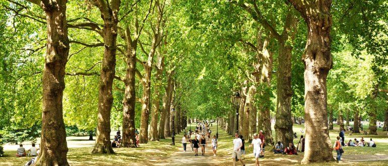 Μεγάλα Πάρκα, ThessAgenda, Πρόταση - Ατζέντα για το Νομό Θεσσαλονίκης, Κώστας Ευθυμίου